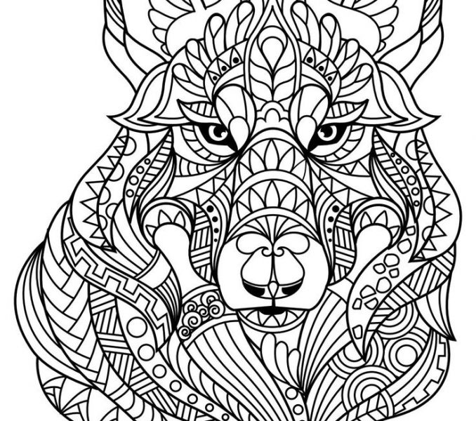 678x600 Free Pdf Coloring Pages Animal Coloring Pages Pdf Adult Coloring