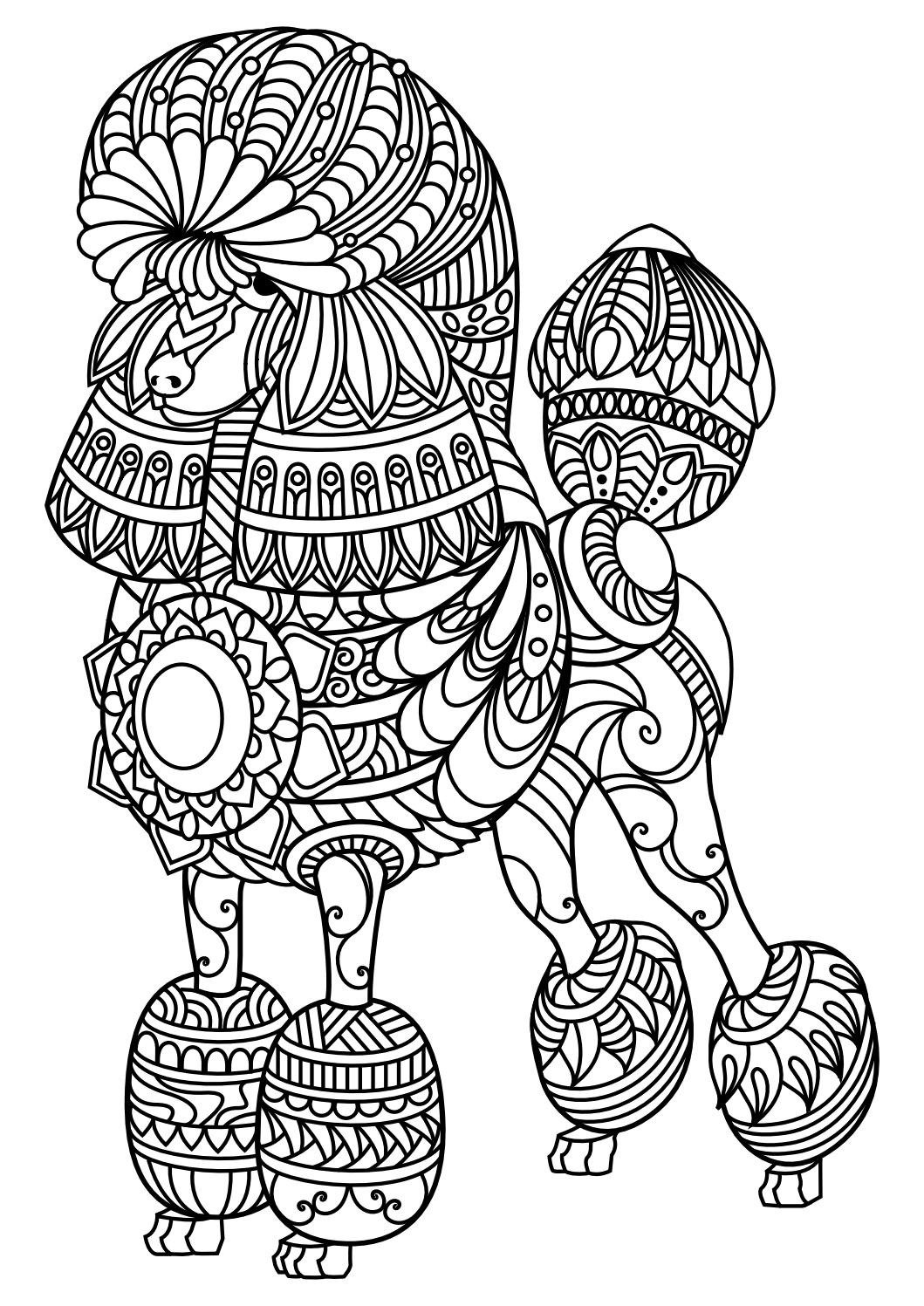 1059x1497 Animal Coloring Pages Pdf Adult Coloring, Coloring Books And Dog Cat