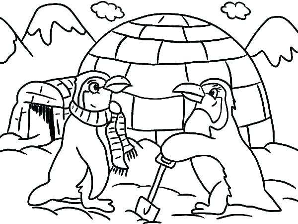 600x450 Free Penguin Coloring Pages