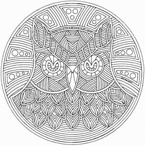 500x501 Mandala Adult Coloring Pages Best Free Printable Abstract Coloring