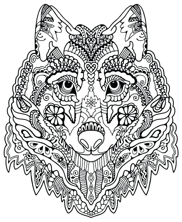 736x896 Forest Animal Coloring Pages Pattern Animal Coloring Pages