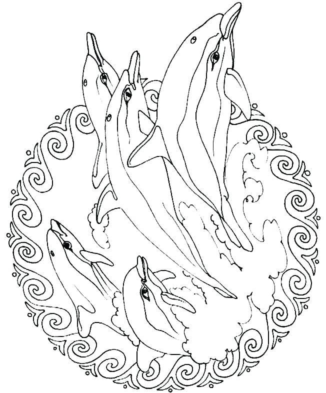 652x786 Printable Animal Mandalas Free Mandala Coloring Pages To Print