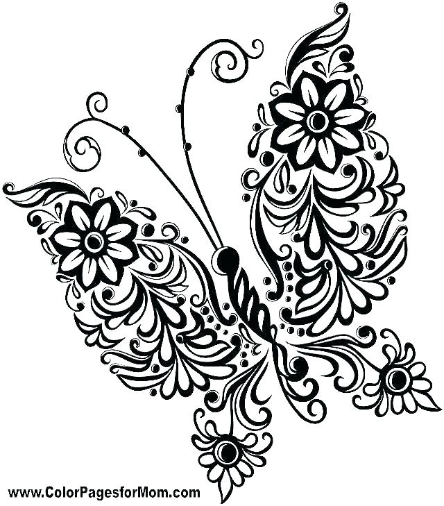 640x729 Butterfly Printable Coloring Pages Monarch Butterfly Coloring