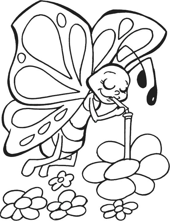 553x721 Coloring Page Of Butterfly Free Printable Butterfly Coloring Pages