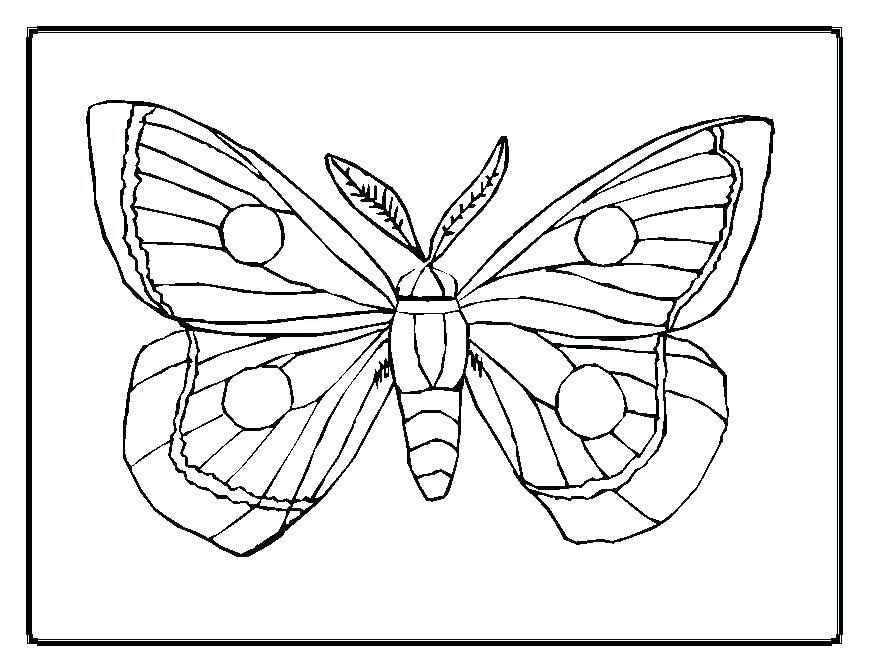869x671 Free Printable Butterfly Pictures To Color Butterfly Coloring