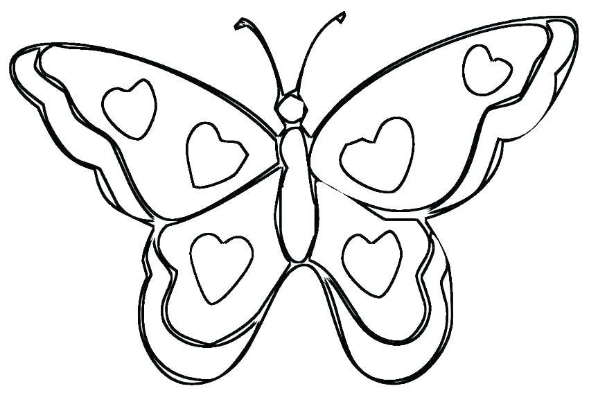 850x567 Free Butterfly Coloring Pages Printable
