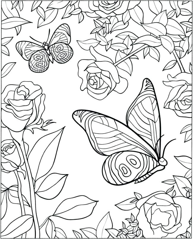 650x804 Butterfly Coloring Pages For Adults Plus D Coloring Book