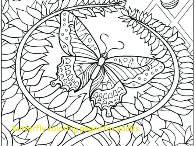 640x480 Butterfly Coloring Pages For Adults With Butterfly Coloring Sheets