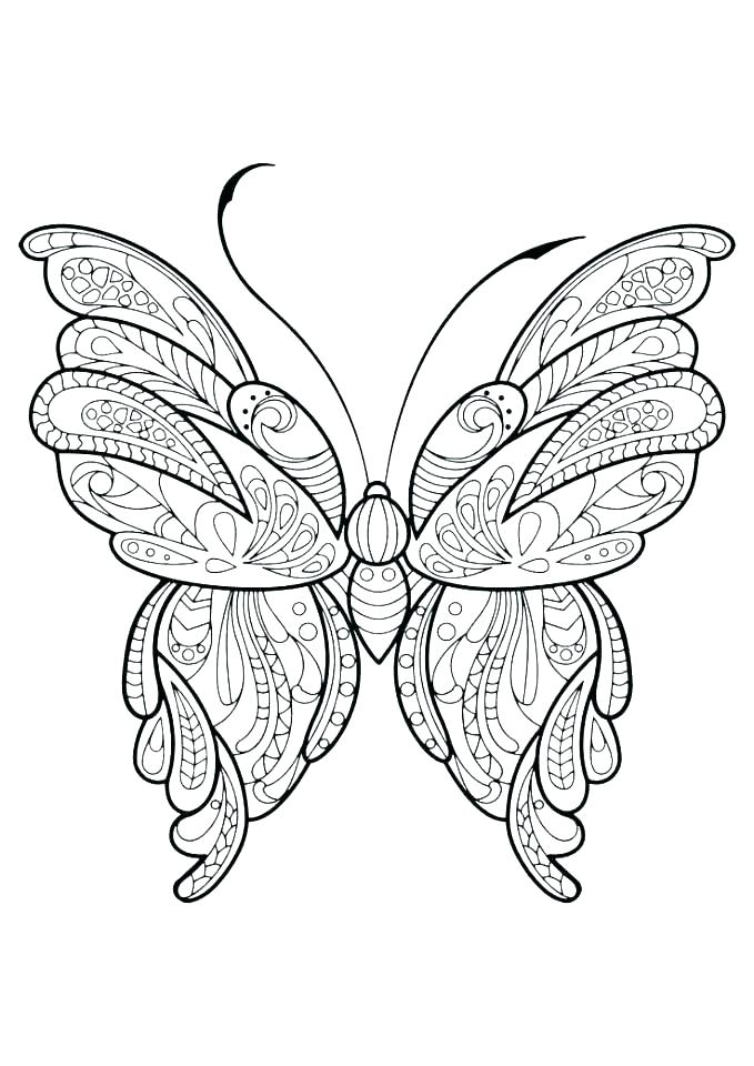 679x960 Coloring Pages Butterflies Life Cycle Of A Butterfly Coloring Page