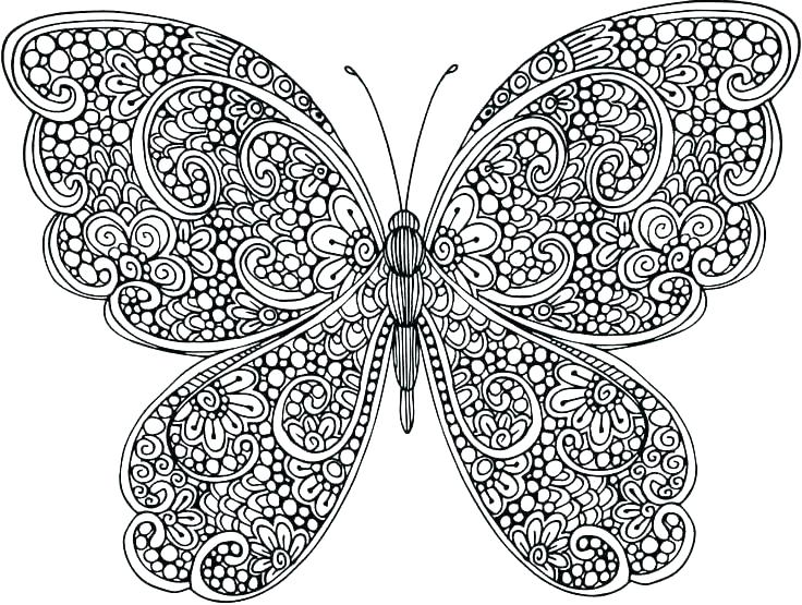 736x555 Free Printable Butterfly Coloring Pages Butterfly Coloring Page