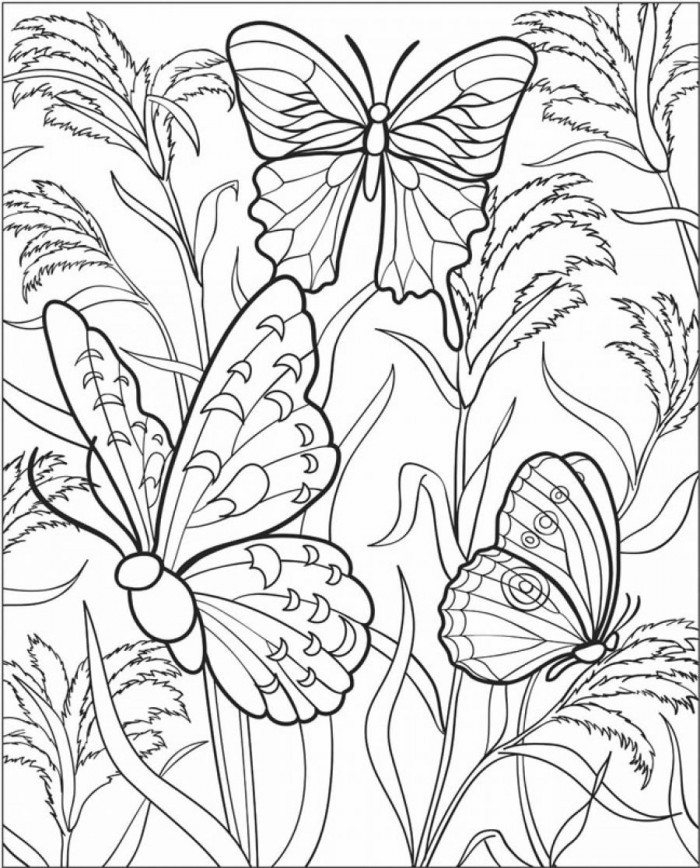 700x868 Free Printable Butterfly Coloring Pages Adults Difficult Butterfly