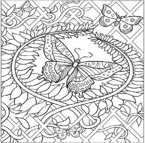 600x592 Free Printable Butterfly Coloring Pages Adults Hard Animal