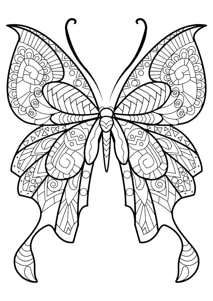 736x1040 Butterflies Coloring Pages Butterfly Coloring Page Butterfly