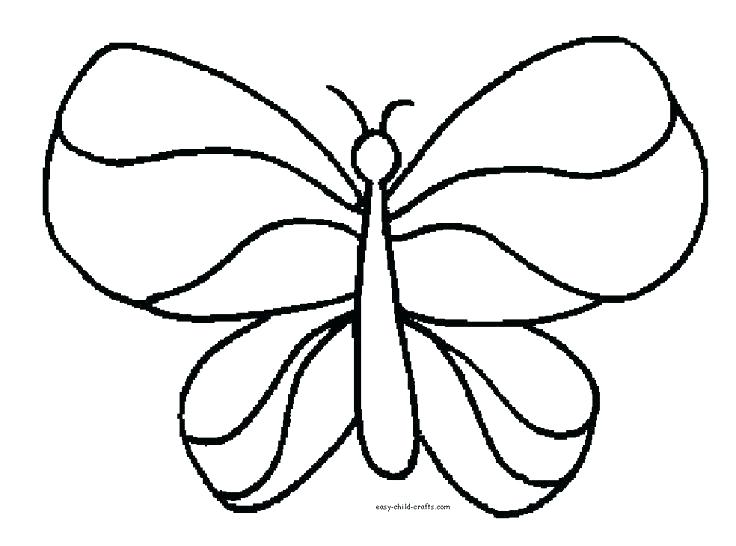 736x546 Detailed Butterfly Coloring Pages Free Printable Butterfly