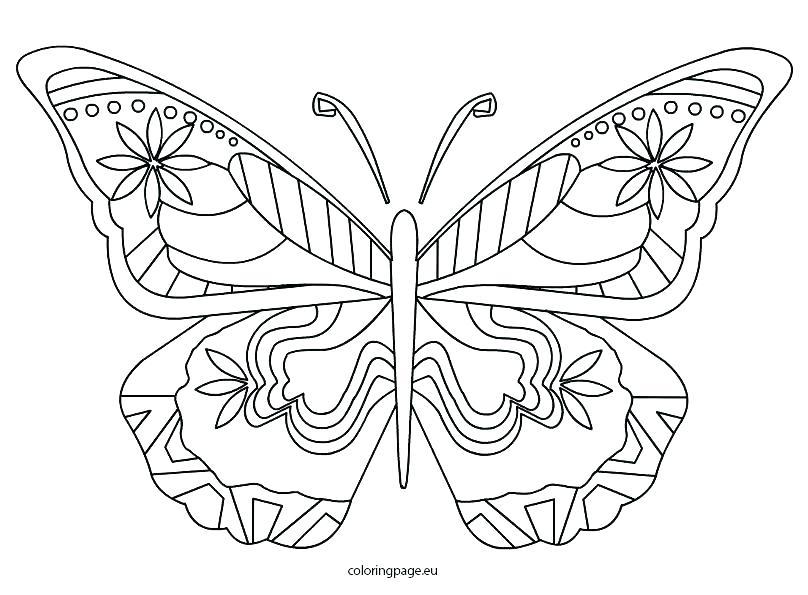 808x595 Butterfly Coloring Page Butterfly Coloring Page Butterfly Coloring