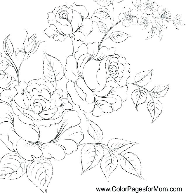 637x660 Free Printable Flower Coloring Pages For Adults Also Flowers