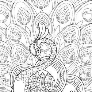 Free Printable Coloring Pages For Adults Pdf at GetDrawings | Free download