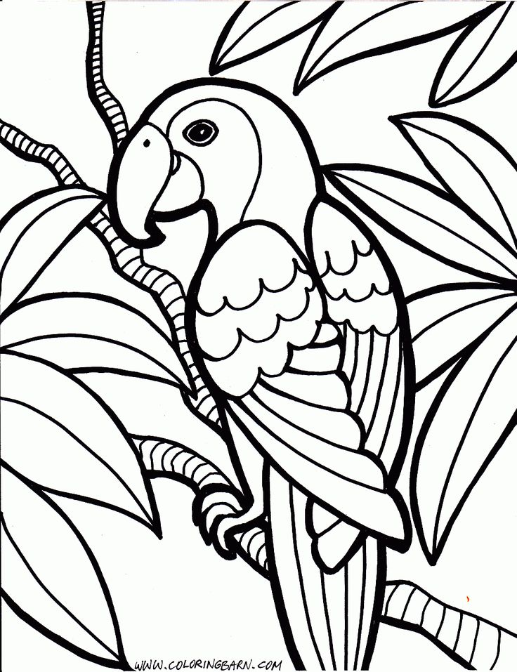 Free Printable Coloring Pages For Kids At Getdrawings Free Download