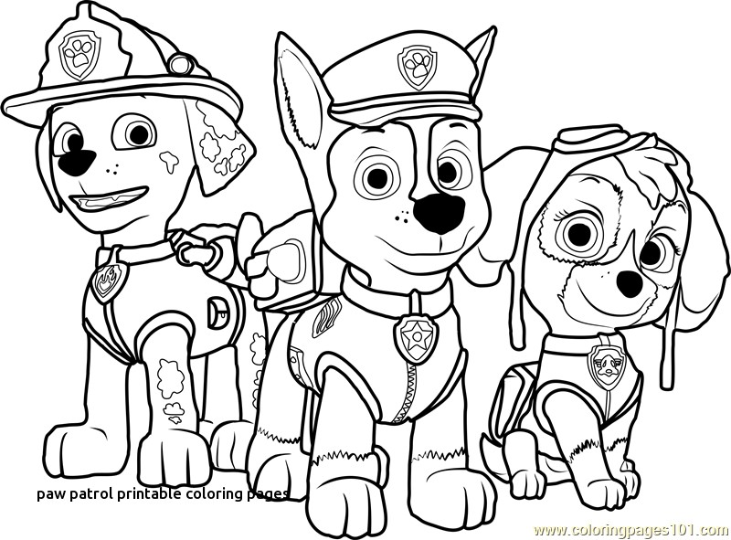 Annewhitfield 38 Printable Coloring Pages Paw Patrol Gif