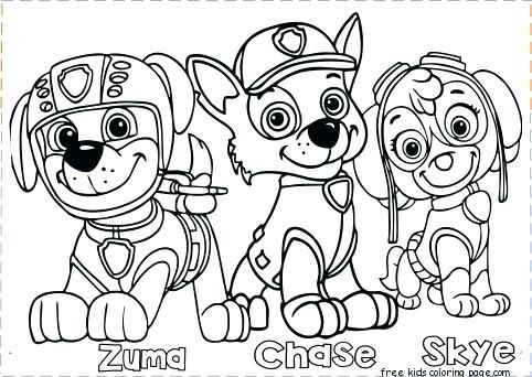 482x342 Stunning Paw Print Coloring Page Paw Patrol Coloring Pages Free