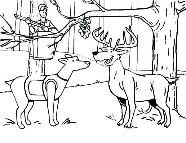 600x463 Free Printable Deer Hunting Coloring Pages Elk Page Sheet Deer