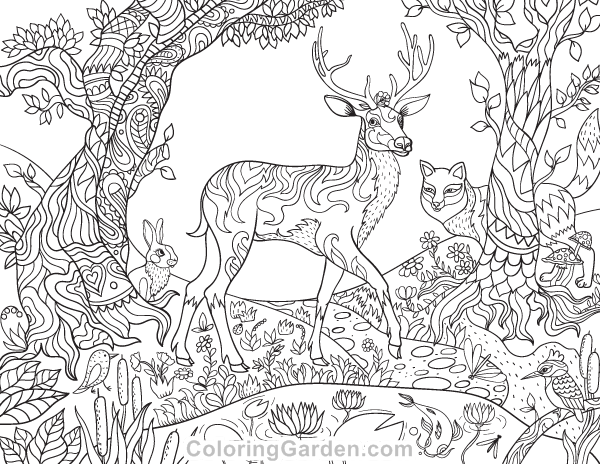 600x464 Free Printable Forest Creatures Adult Coloring Page The Coloring