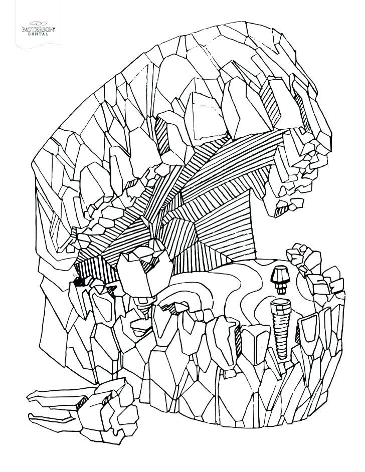 728x942 Dental Coloring Pages Printable Coloring Pages Of Teeth Teeth