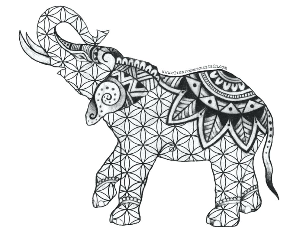 960x777 Coloring Pages Elephant Free Printable Elephant Coloring Pages