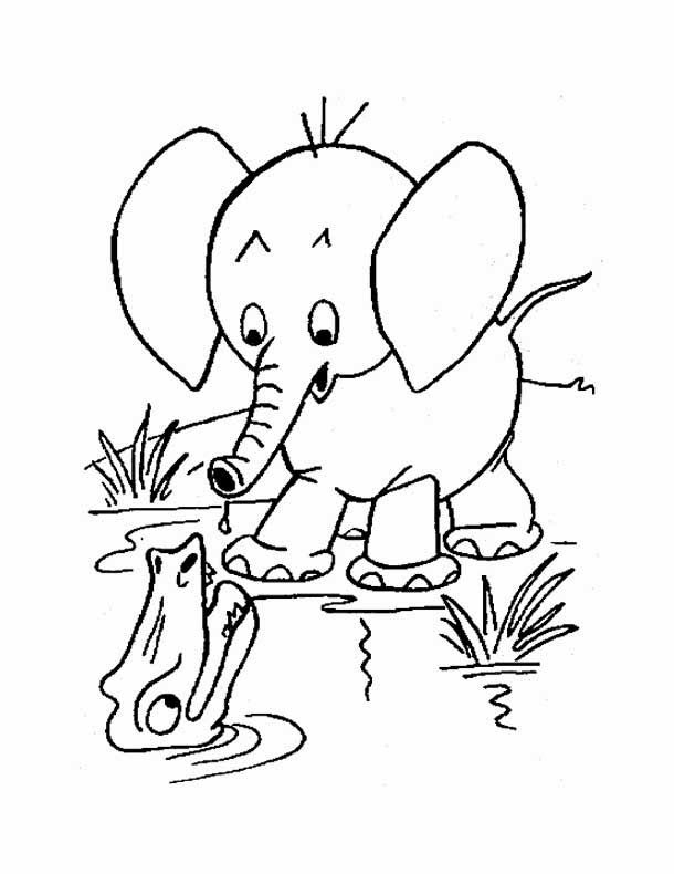 610x790 Download Free Printable Baby Elephant Coloring Pages To Color