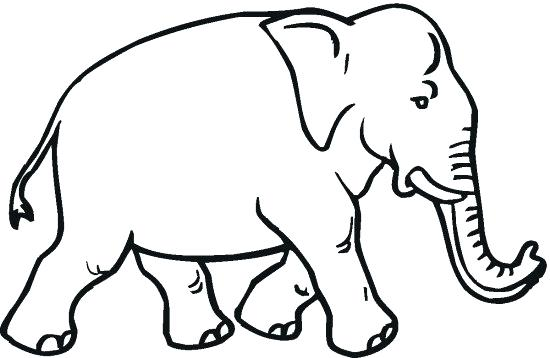 550x358 Elephant Free Printable Elephant Coloring Pages Free Printable