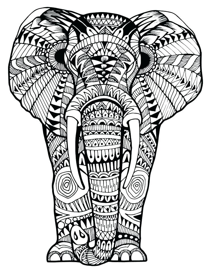 Free Printable Elephant Coloring Pages At Getdrawings Com Free For