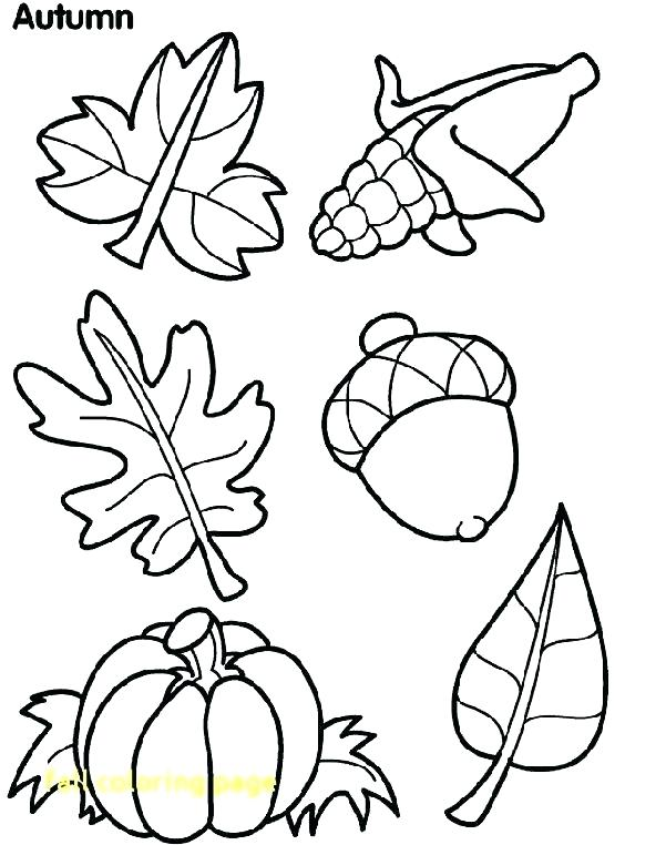 601x762 Fall Color Pages Printable Free Free Printable Fall Coloring Pages
