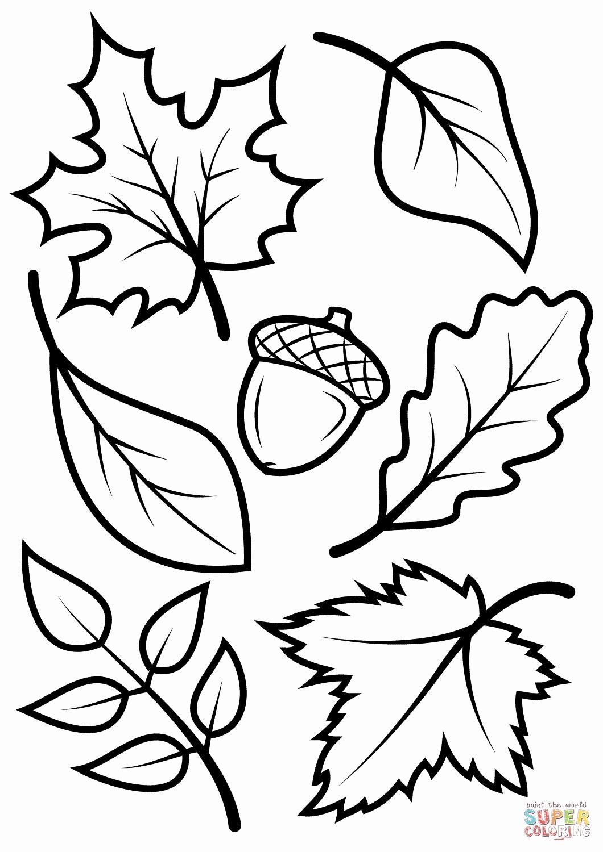 1060x1500 Fall Leaves Coloring Pages Printable Elegant Animals Raking Fall