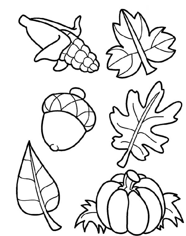 600x761 Astonishing Harvest Coloring Pictures Page Free Online