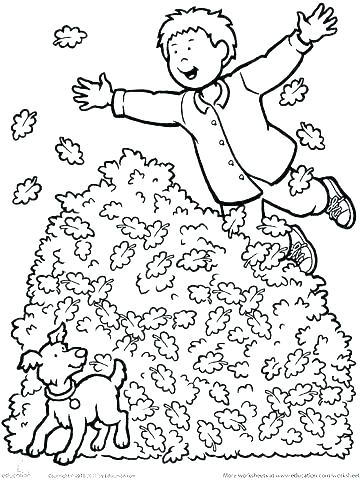 360x480 Harvest Coloring Pages Printables Autumn Harvest Coloring Page