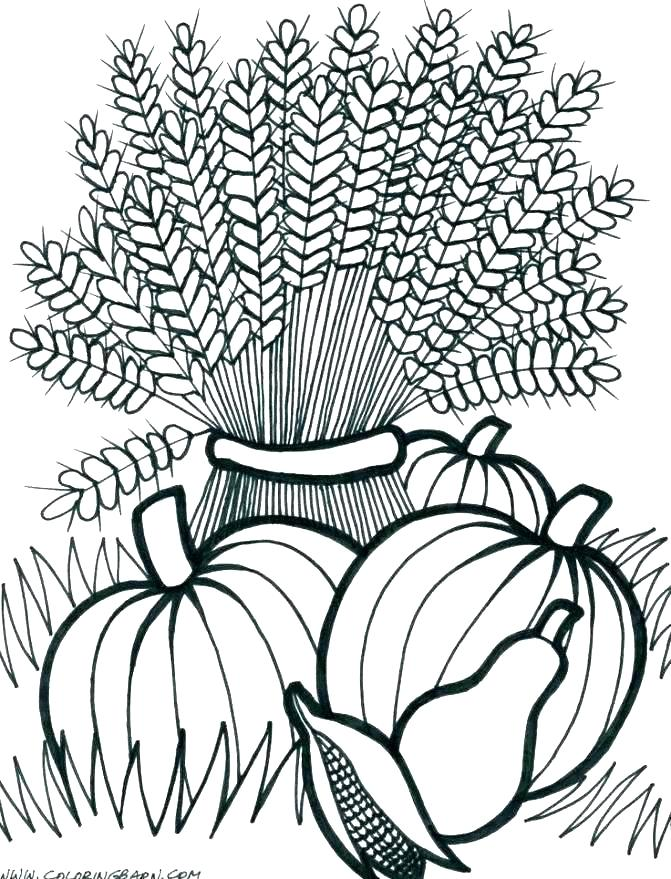 671x879 Harvest Coloring Pictures