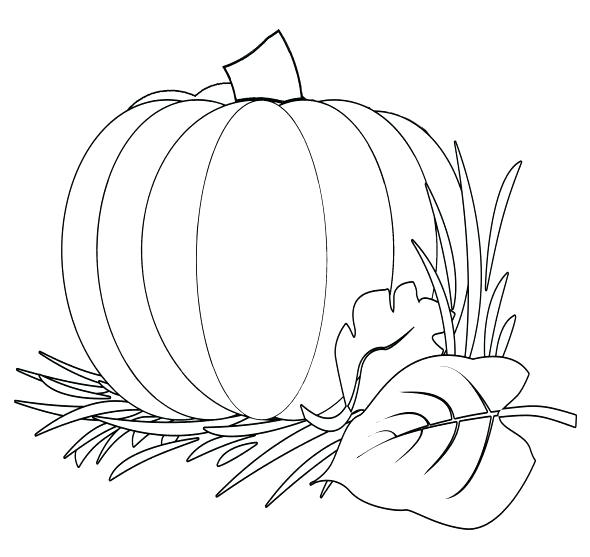 590x557 Christian Pumpkin Coloring Pages Fall Harvest Coloring Pages Color