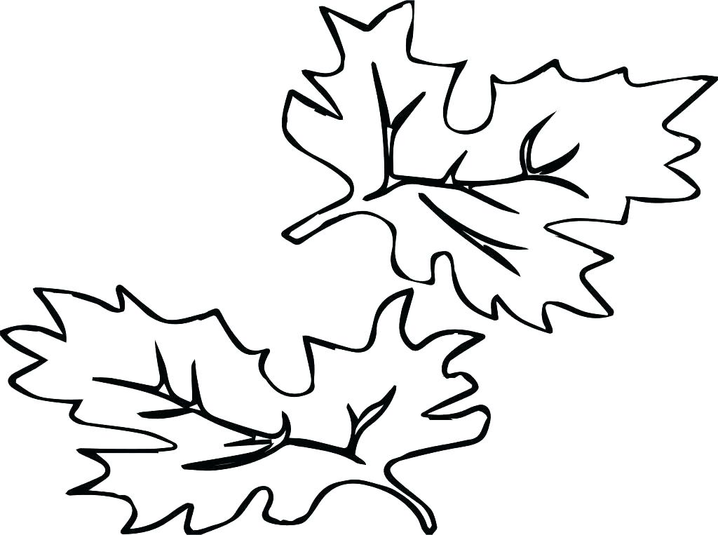 1024x763 Fall Color Sheets Printable Autumn Leaves Coloring Pages Fall