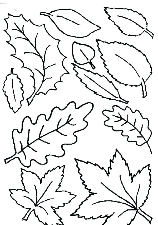 600x851 Falling Leaves Coloring Pages Free Printable Fall Coloring Pages