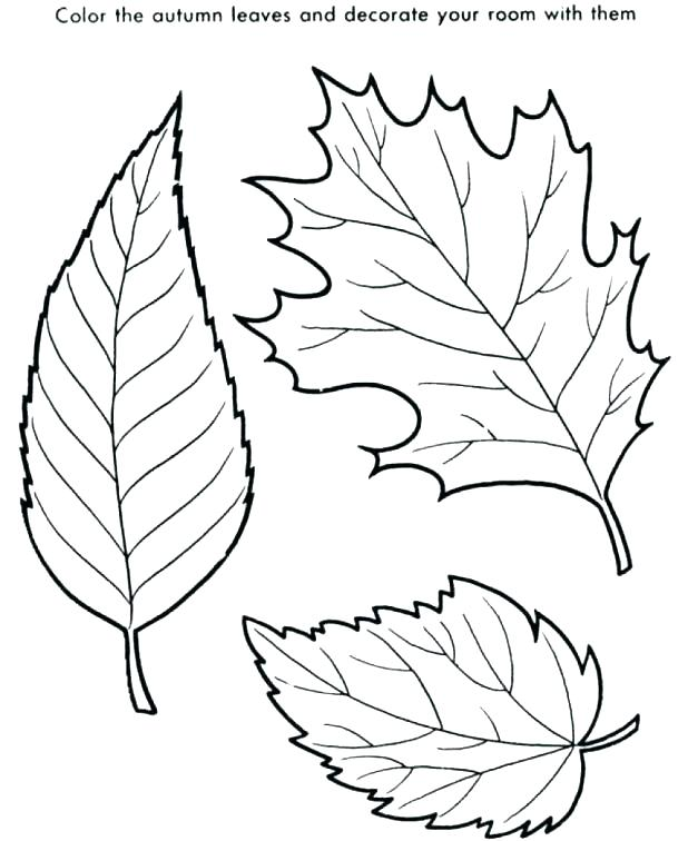 618x756 Leaf Color Page Falling Leaves Coloring Pages Wonderful