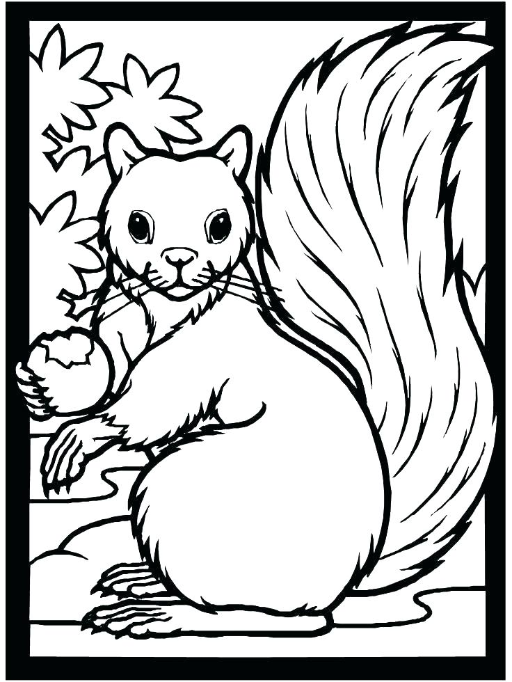 736x980 Fall Coloring Pages Printable Free