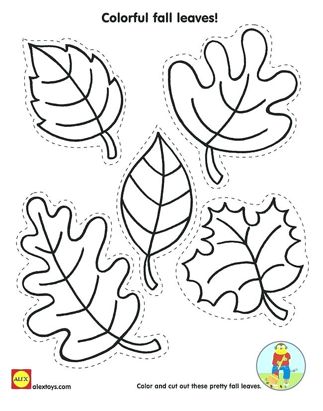 650x826 Printable Leaves Coloring Pages
