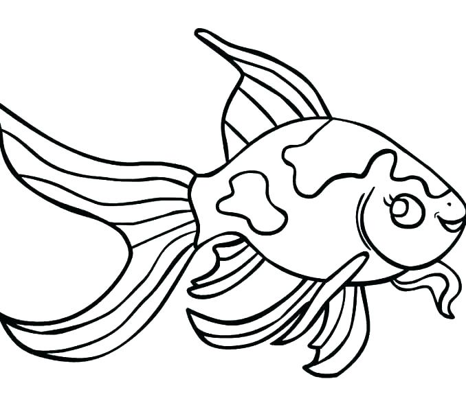 picture relating to Printable Fishes known as No cost Printable Fish Coloring Webpages at  Free of charge
