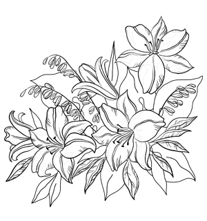 Free Printable Flower Coloring Pages For Adults At Getdrawings Com