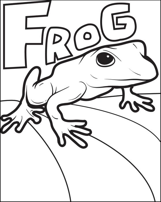 558x700 Frog Color Page, Frog Color Pages Coloring Home