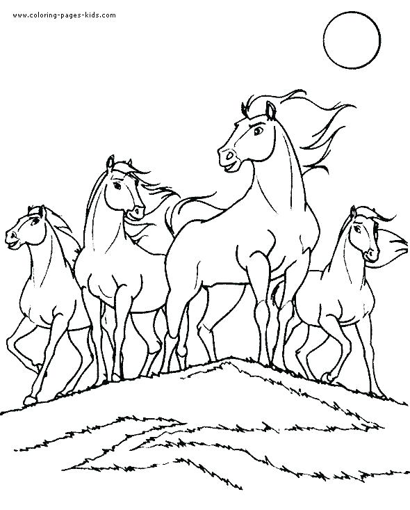 590x733 Wild Horse Coloring Pages Wild Horse Coloring Pages For Kids Wild