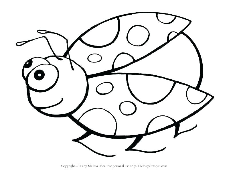 Free Printable Insect Coloring Pages At Getdrawings Com Free For