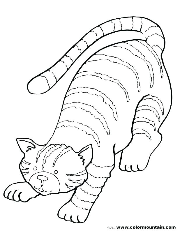 618x800 Free Kitten Coloring Pages Free Kitten Coloring Pages Kitten