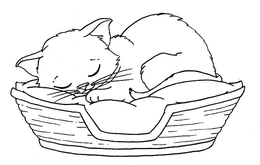 878x559 Printable Kitten Coloring Pages The Tiger Kitten Coloring Pages