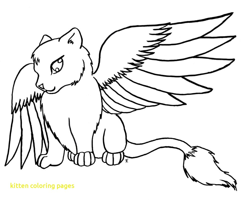 1002x797 Sizable Kitten Coloring Sheet Free Printable Pages For Kids Best
